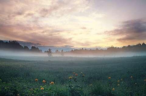 不思議な体験Part.1 瞑想がもたらした心の平穏 main
